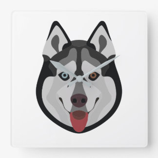 Illustration dogs face Siberian Husky Square Wall Clock