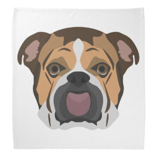 Illustration English Bulldog Bandana