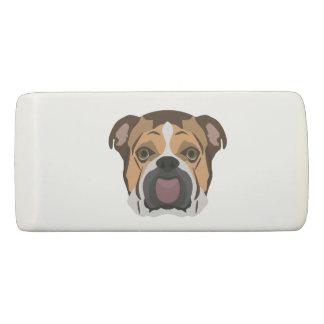 Illustration English Bulldog Eraser