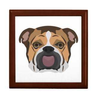 Illustration English Bulldog Gift Box
