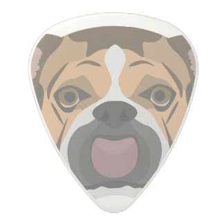 Illustration English Bulldog Polycarbonate Guitar Pick