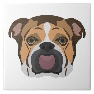 Illustration English Bulldog Tile