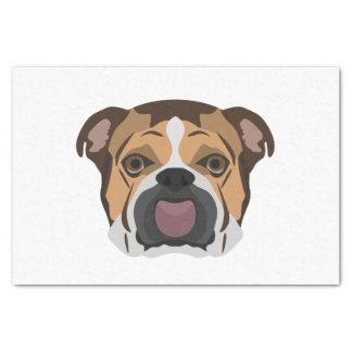 Illustration English Bulldog Tissue Paper