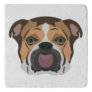 Illustration English Bulldog Trivet