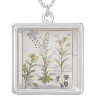 Illustration from the 'Book of Simple Medicines' 2 Silver Plated Necklace