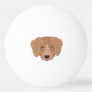 Illustration Golden Retriever Puppy Ping-Pong Ball