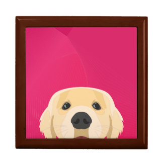 Illustration Golden Retriver with pink background Gift Box