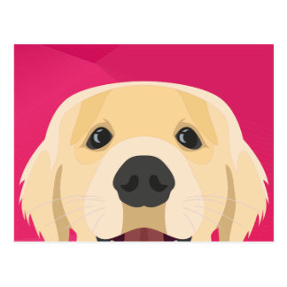 Illustration Golden Retriver with pink background Postcard