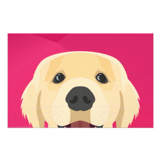 Illustration Golden Retriver with pink background Stationery
