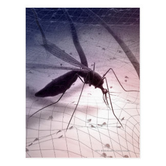 Illustration of a mosquito biting postcard