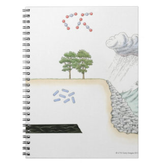 Illustration of carbon cycle on Earth Notebooks