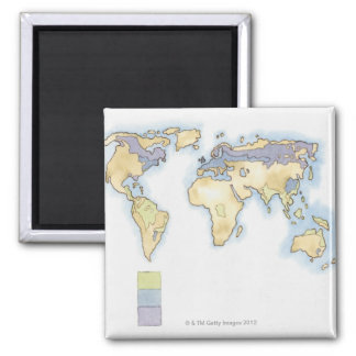 Illustration of map of the world showing areas square magnet
