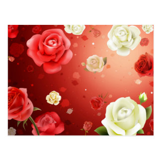 illustration of white and red roses postcard