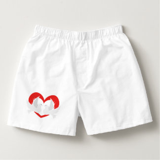 Illustration peace doves with heart boxers