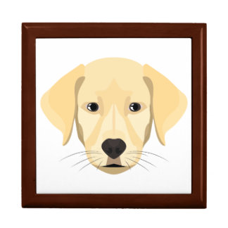 Illustration Puppy Golden Retriver Gift Box
