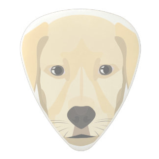 Illustration Puppy Golden Retriver Polycarbonate Guitar Pick