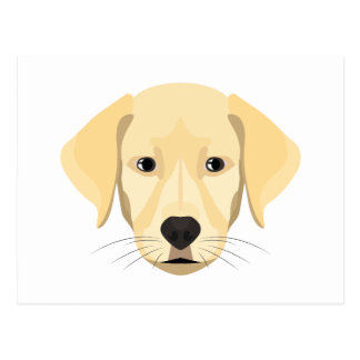 Illustration Puppy Golden Retriver Postcard