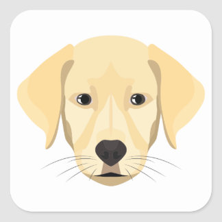 Illustration Puppy Golden Retriver Square Sticker