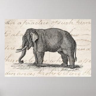 Illustration vintage d éléphant de 1800s - éléphan posters