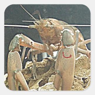 ilovecrayfish02062559 square sticker