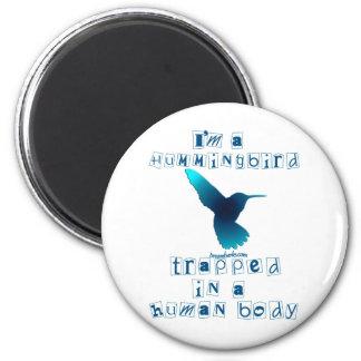 I'm a Hummingbird Magnet