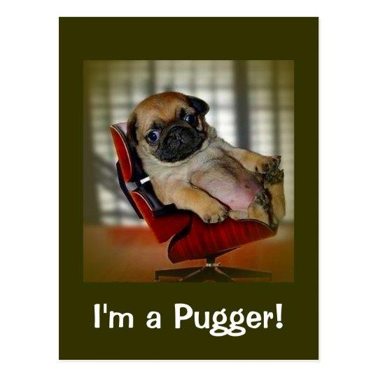 I'm a Pugger! Postcard