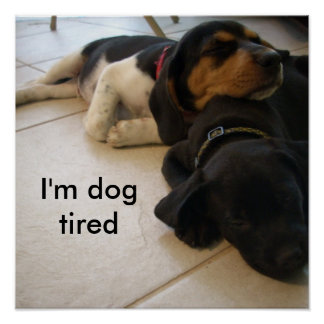 I'm dog  tired poster