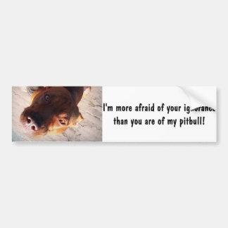I'm more afraid of your ignorance bumper sticker