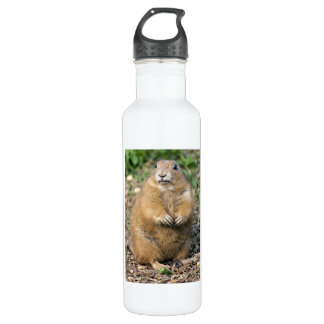 I'm not Fat, I'm Cuddly 710 Ml Water Bottle