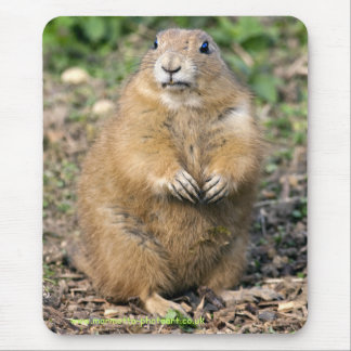 I'm not Fat, I'm Cuddly Mousemat Mouse Pad