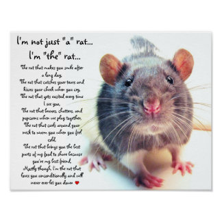 "I'm Not Just ""a"" Rat Poster"