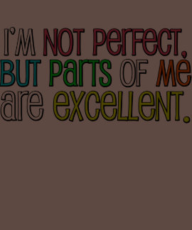 I'm not perfect but Parts of me are excellent T-shirts