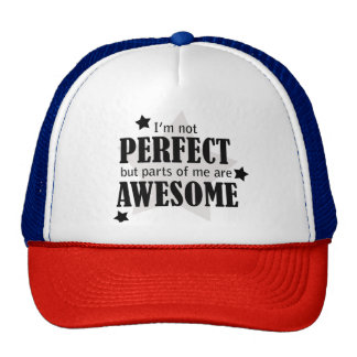 I'm Not Perfect - Statement Shirt , Quotes Trucker Hat