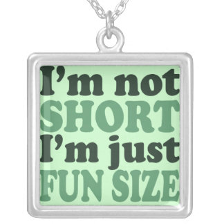 I'm not short just fun size silver plated necklace