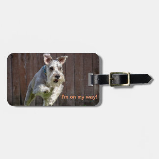 I'm on my way! - Miniature Schnauzer Luggage Tag