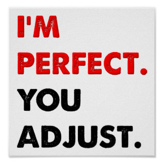 I'm Perfect Funny Poster