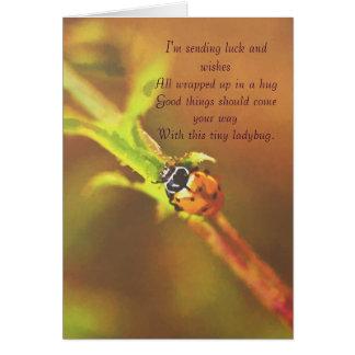 I'm sending luck..ladybug greetingcard card