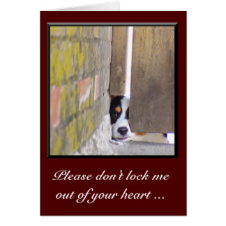 I'm Sorry Card--Don't Lock Me Out Card