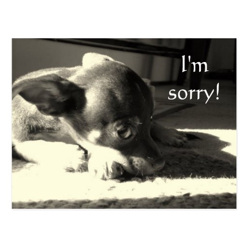I'm sorry! post card