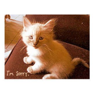 I'm sorry postcard
