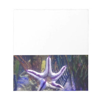 I'm stuck on you starfish notepad