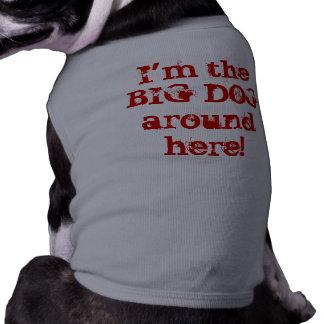 I'm the BIG DOG around here! Pet T-shirt