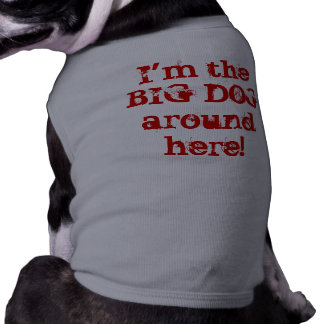 I'm the BIG DOG around here! Pet Clothing