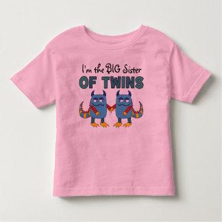 I'm the Big Sister of Twins T Shirts