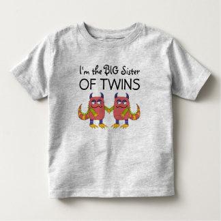 I'm the Big Sister of Twins Tees