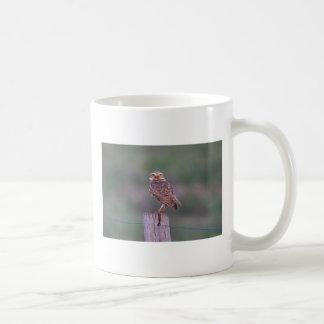 I'm watching you basic white mug
