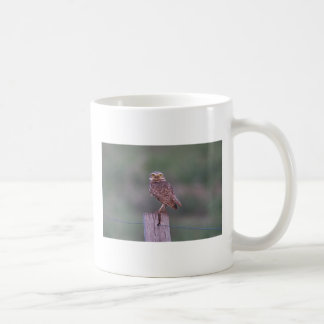 I'm watching you classic white coffee mug