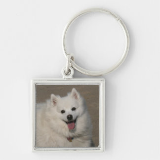 Image112a Silver-Colored Square Keychain