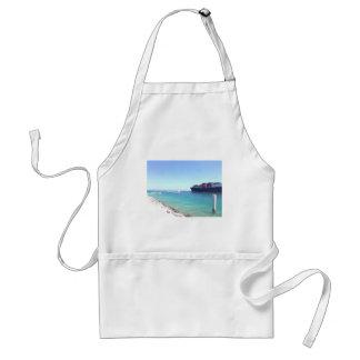 image.jpg south beach Miami Florida ocean and ship Standard Apron