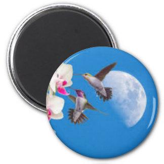 images (8) magnet